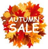 Abstrakte Vektor-Illustration Autumn Sale Background mit fallendem Autumn Leaves Stockfoto
