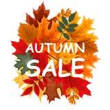 Abstrakte Vektor-Illustration Autumn Sale Background mit fallendem Autumn Leaves Stockfotos