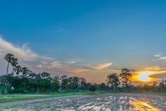 Abstrakte Weichzeichnung das Schattenbild des Sonnenuntergangs mit dem Pflügen, Ackerbau, Sammeln, Ackerbau, bevor dem Pflanzen,  Stockfotografie