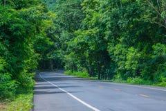 Abstrakte Weichzeichnung die Straße mit dem Naturbaumtunnel in Thailand Lizenzfreie Stockfotos
