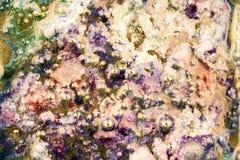 Abstrakte Zusammensetzung mit Mischung des Öls, des Wassers und der bunten Tinte Lizenzfreies Stockbild
