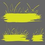 Fahne des grünen Grases Lizenzfreie Stockfotos