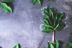 Abstrakter Baum auf einem schwarzen Hintergrundkonzept Stockbild