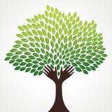 Abstrakter Baum mögen Handzweig vektor abbildung