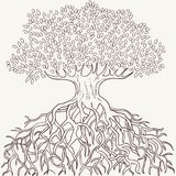Abstrakter Baum mit Zweigen und Wurzelschattenbild Lizenzfreies Stockbild