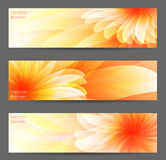 Abstrakter Blumen-Vektor-Hintergrund Lizenzfreie Stockfotografie
