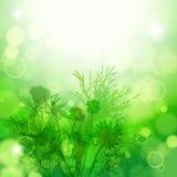 Abstrakter Blumenhintergrund. Element für Auslegung. Stockbild