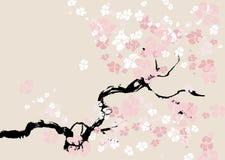 Abstrakter Blumenhintergrund. Kirschblüte. Stockfotos