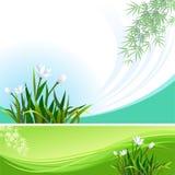 Abstrakter Blumenvektorhintergrund - Fahne lizenzfreie abbildung