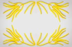 Abstrakter Blumenzusammensetzungsrahmen mit den goldenen Blumenohrringen Haselnuss auf grauem Hintergrund mit Raum für Text Lizenzfreie Stockfotos