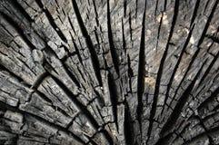 Abstrakter Brandholzhintergrund Stockfotografie
