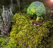 Abstrakter Brokkoli Stockfoto