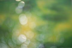 Abstrakter dunkelgrüner bokeh Hintergrund Lizenzfreie Stockfotografie