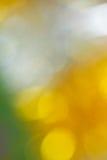 Abstrakte Farbunschärfehintergründe Lizenzfreie Stockfotos