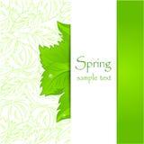 Abstrakter Frühlingshintergrund Stockfotografie