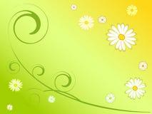 Abstrakter Frühlingshintergrund Stockfotos