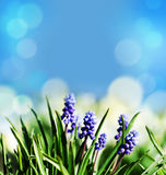 Abstrakter Frühlingsostern-Hintergrund Lizenzfreies Stockbild