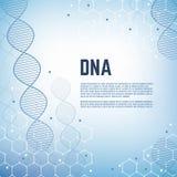 Abstrakter Genetikwissenschafts-Vektorhintergrund mit Molekülmodell menschlichen Chromosoms DNA Stockbilder