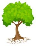 Abstrakter grüner Baum lizenzfreie abbildung