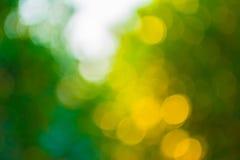 Abstrakter grüner natürlicher bokeh Hintergrund Lizenzfreie Stockfotografie