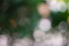 Abstrakter grüner natürlicher bokeh Hintergrund Lizenzfreies Stockbild