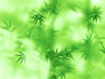 Abstrakter grüner natürlicher Hintergrund Stockfoto