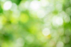Abstrakter grüner Natur-Hintergrund Stockfotos