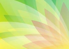 Abstrakter grüner und hellroter Blumenhintergrund Stockfoto