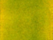 Abstrakter grüner unscharfer Hintergrund Lizenzfreie Stockfotografie