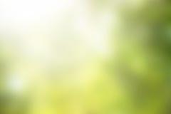 Abstrakter grüner unscharfer Hintergrund Lizenzfreies Stockfoto