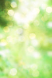 Abstrakter grüner Frühlingsnaturhintergrund Stockbild