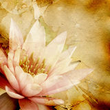 Abstrakter grunge Hintergrund mit Blumenmuster Stockbild