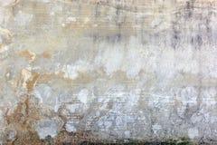 Abstrakter hellgrauer Hintergrund mit merkwürdigen braunen Adern E Stockbilder
