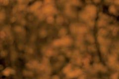 Abstrakter Herbst bokeh Hintergrund Lizenzfreies Stockfoto