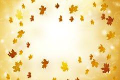 Abstrakter Herbsthintergrund mit Strahlen und fliegenden Blättern lizenzfreie stockbilder