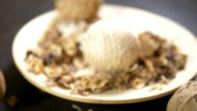 Abstrakter Hintergrund, Beschaffenheit von Trockenblumen potpourri Nahaufnahme Trockenblumen und Samen benutzt für Aromatherapie stock footage
