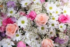 Abstrakter Hintergrund der Blumen stockfotografie
