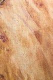 Abstrakter Hintergrund der braunen Farbe auf Segeltuch Stockbild