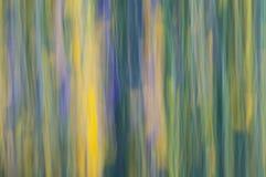 Abstrakter Hintergrund der Natur Stockbild