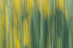 Abstrakter Hintergrund der Natur Lizenzfreie Stockfotografie