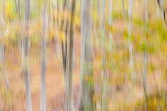 Abstrakter Hintergrund der Natur Stockfoto