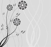 Abstrakter Hintergrund der Natur, Naturblumen Lizenzfreies Stockfoto