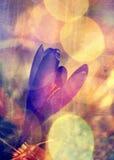 Abstrakter Hintergrund der wilden Blume des Aquarells stock abbildung