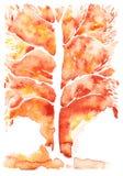 Abstrakter Hintergrund des Aquarells, orange Symbolisierungsherbstbaum Stockbild