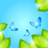 Abstrakter Hintergrund des Frühlinges Stockbilder
