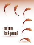 Abstrakter Hintergrund des Herbstes Lizenzfreies Stockfoto