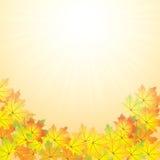 Abstrakter Hintergrund des Herbstes stock abbildung