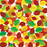 Abstrakter Hintergrund des Herbstes Bunte Blätter Lizenzfreies Stockbild