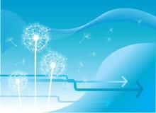 Abstrakter Hintergrund des Löwenzahns Lizenzfreies Stockfoto