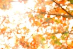 Abstrakter Hintergrund des Sommers. Lizenzfreies Stockbild